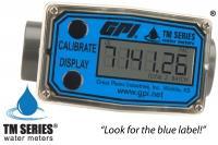 ồng hồ nước GPI TM100