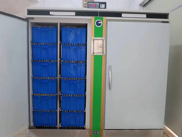 Máy làm giá đỗ công nghiệp sản lượng 100kg/ngày