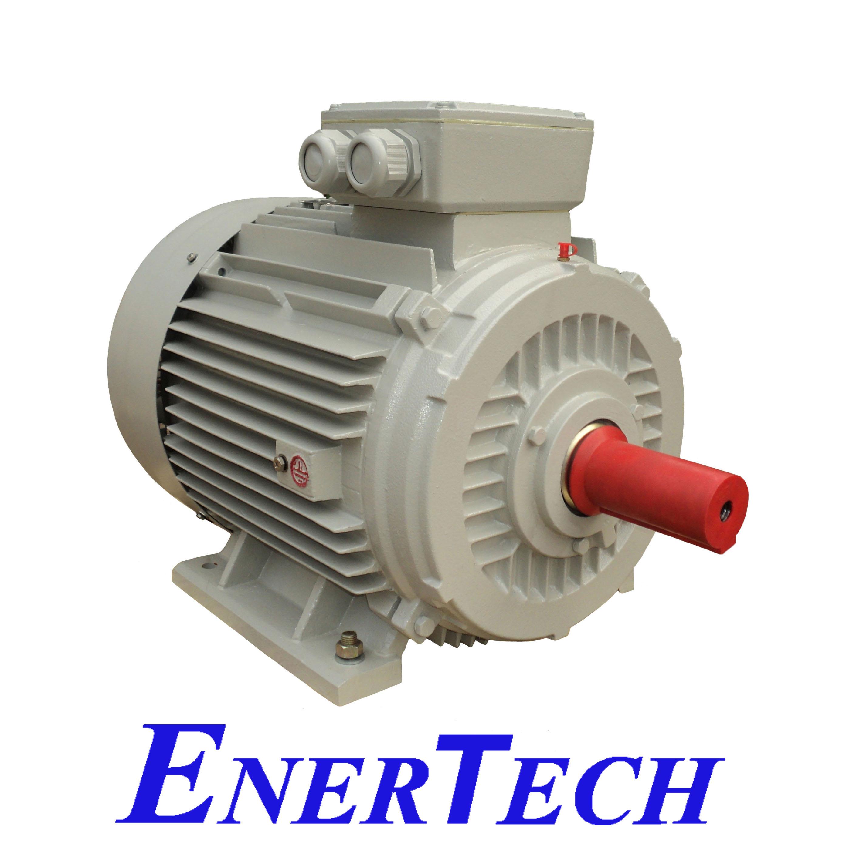 Motor IQF Enertech