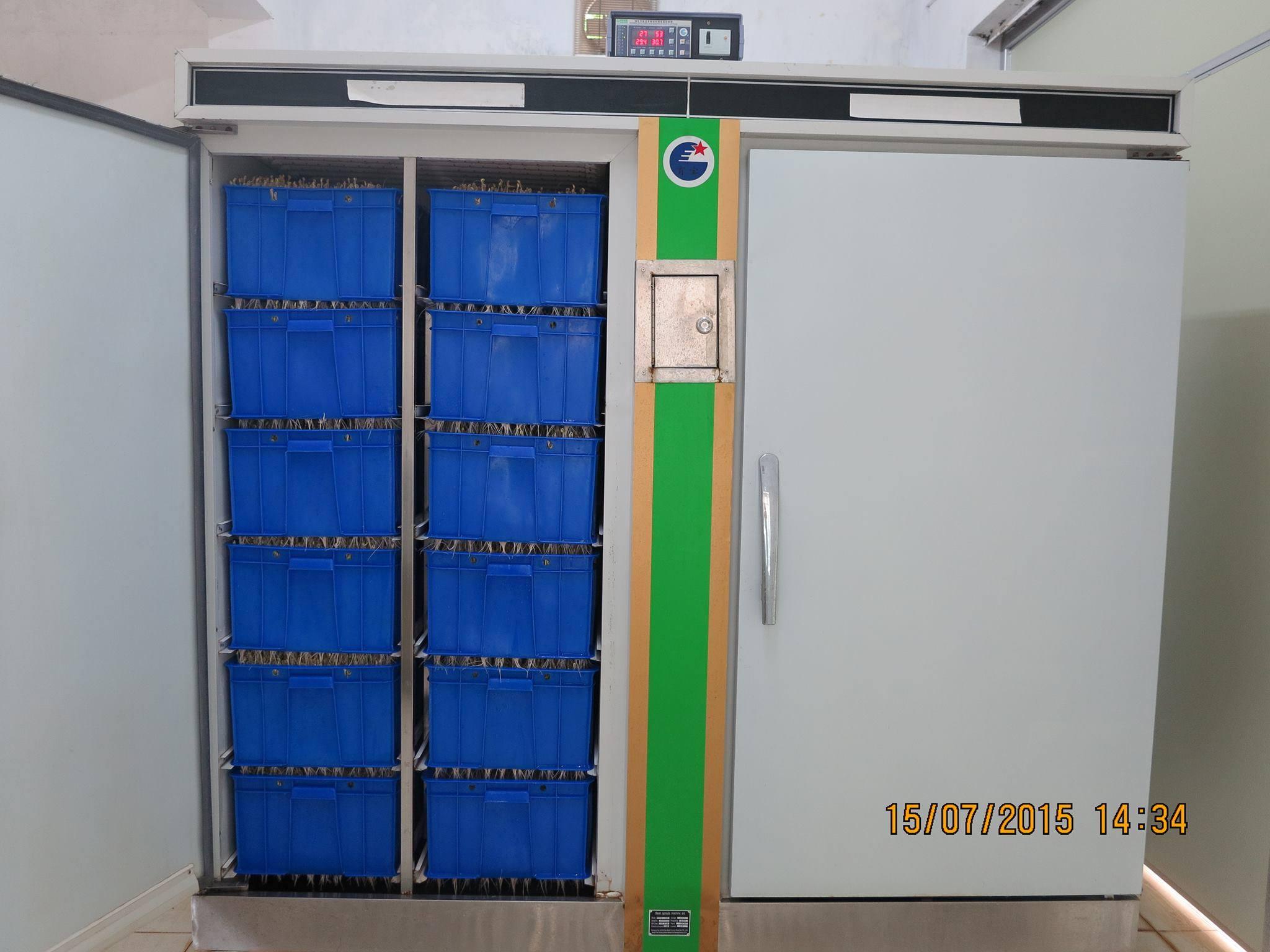 Máy làm giá đỗ công nghiệp - Máy trồng rau mầm
