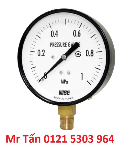 Đồng hồ đo áp suất WISE P110 (Đại lý) TMP Việt Nam