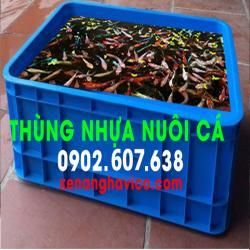 Giá bán thùng nhựa nuôi cá tại tphcm